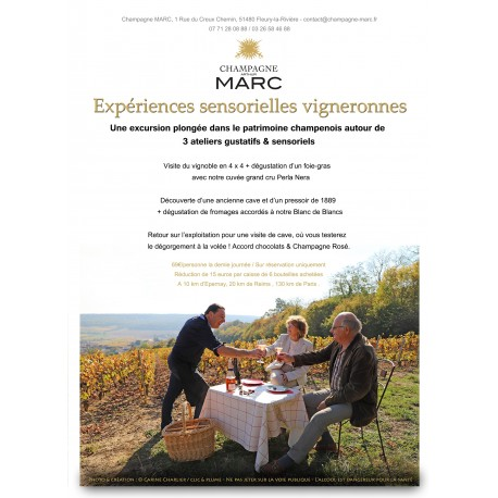 A unique sensory experience in the vineyards
